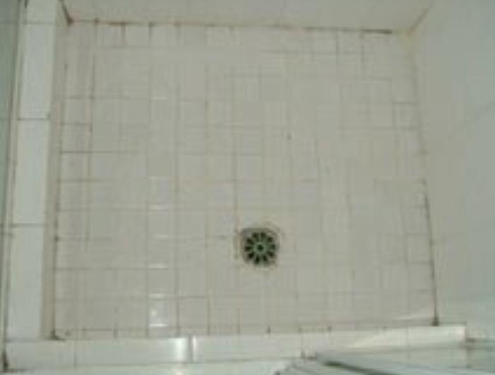 showeroldp
