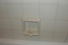 Soap-dish-and-tiles-before