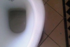 toilet1_after